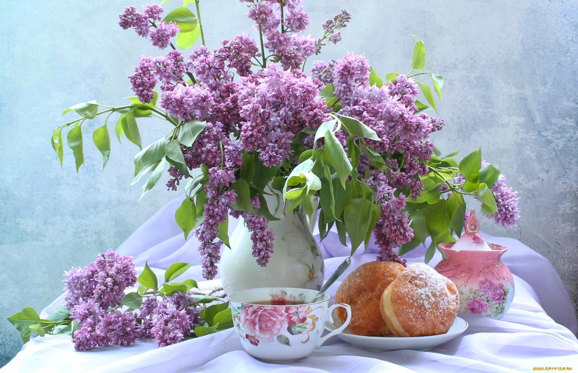 Обои цветы, чай, натюрморт. Разное foto 18